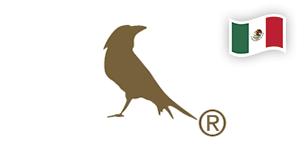 casa cuervo mexico